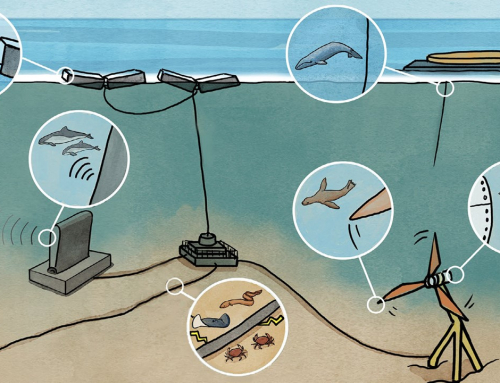 Webinar Event: Deployment of Marine Energy Devices