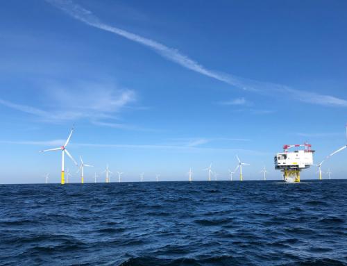 Webinar Event: Offshore Wind Key To Australia's Clean Energy Future
